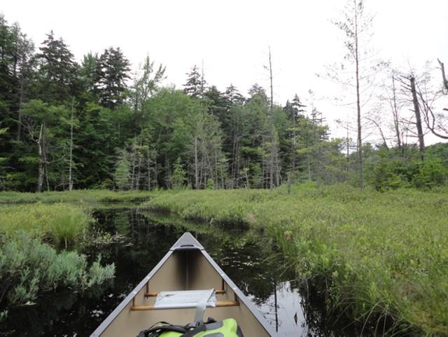 canoetrips1.jpg
