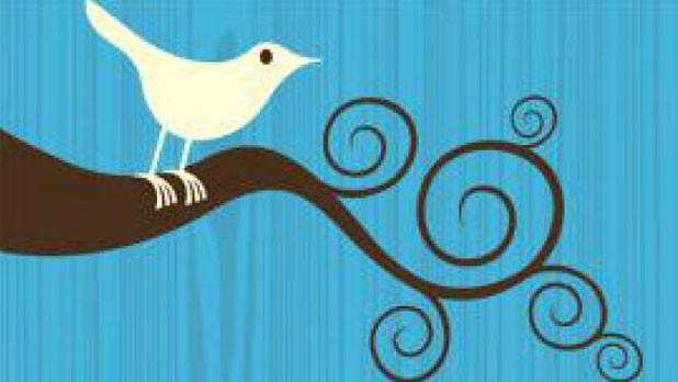 f-twitter_0.jpg