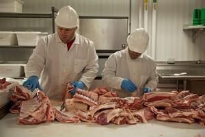 618-freshcut-lamb.jpg