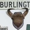 A Young Burlington Couple Enters the Antiques Trade