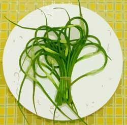 Carol Egbert's garlic scapes