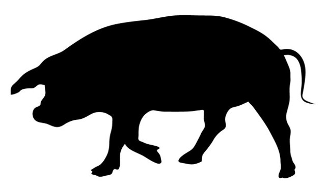 foodnews-piggy.jpg
