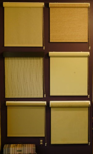 MATTHEW THORSEN - EcoSmart Shades from Gordon's Window Decor