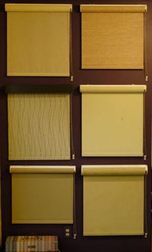 MATTHEW THORSEN - EcoSmart Shades from Gordon's Window Decor