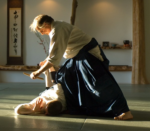 copy_of_pincus_aikido_2.jpg