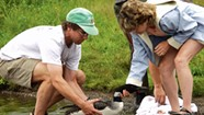 Work: Eric Hanson, Vermont Loon Recovery Project Coordinator
