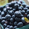 Farmers Market Kitchen: Blueberry Lemon Clafoutis