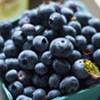 Farmers Market Kitchen: Blueberry Lemon Clafoutis