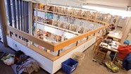 As Burlington's Library Becomes a Haven for the Homeless, Librarians Adapt to a Changing Job
