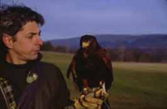 "HAWK EYES Master falconer Rob Waite shows off ""Miss Piggy."""