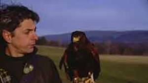 "HAWK EYES Master falconer Rob Waite shows off ""Miss Piggy."""