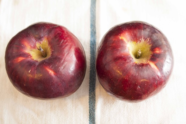 Hulking Empire apples from Champlain Orchards in Shoreham - HANNAH PALMER EGAN