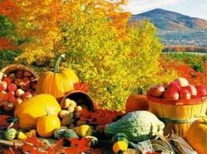 19f3861e_harvest_days.jpg