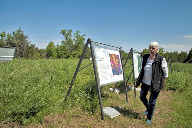 Linda Fitch strolls the Goodsell Ridge Preserve