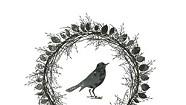 Marissa Nadler, Songs III: Bird on the Water