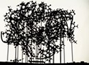 Art Review: Thomas Brennan, BCA Center