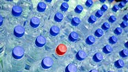 Montpelier Environmentalists Question Water-Bottling Scheme