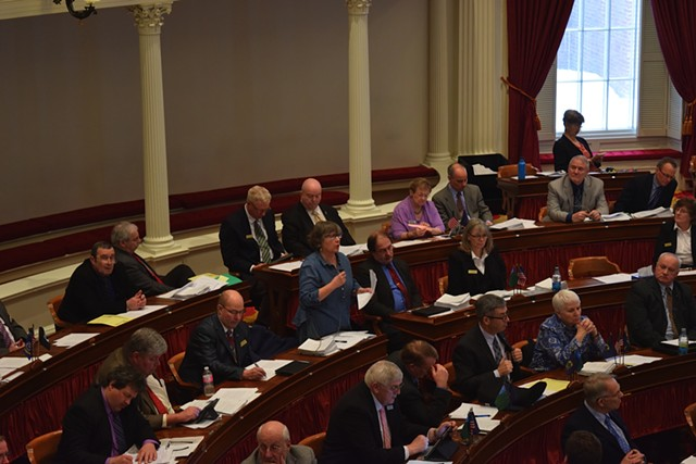 Rep. Cynthia Browning (D-Arlington) speaks for amending an energy bill on the House floor Tuesday. - TERRI HALLENBECK