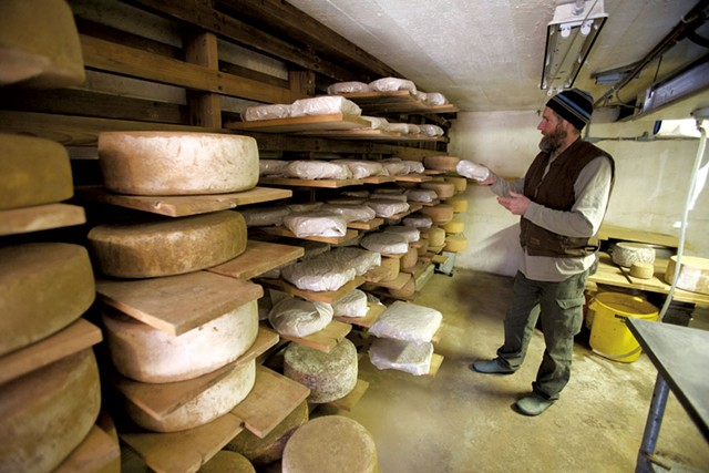 Peter Dixon in his Westminster West cheese cave - DAVID SHAW
