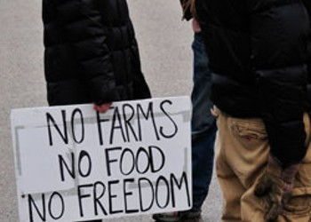 Will a Newly Hatched Federal Food Bill Make Eating Safer? Some Farmers Aren't So Sure