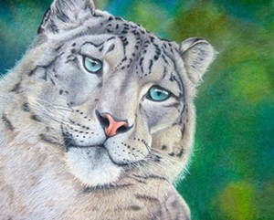 "COURTESY OF CORRINA THURSTON - ""Snow Leopard"""