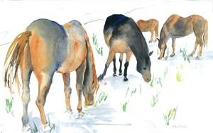 "COURTESY OF JOAN HARLOWE - ""Snowy Pastures"""