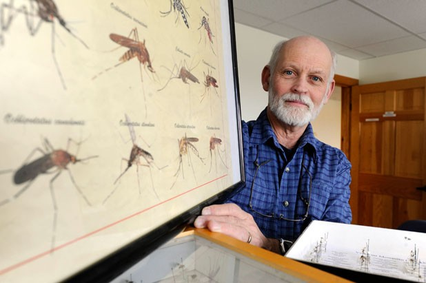 State entomologist Alan Graham with mosquito samples in his Berlin office - JEB WALLACE-BRODEUR