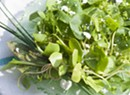 Farmers Market Kitchen: Spring Weeds Salad