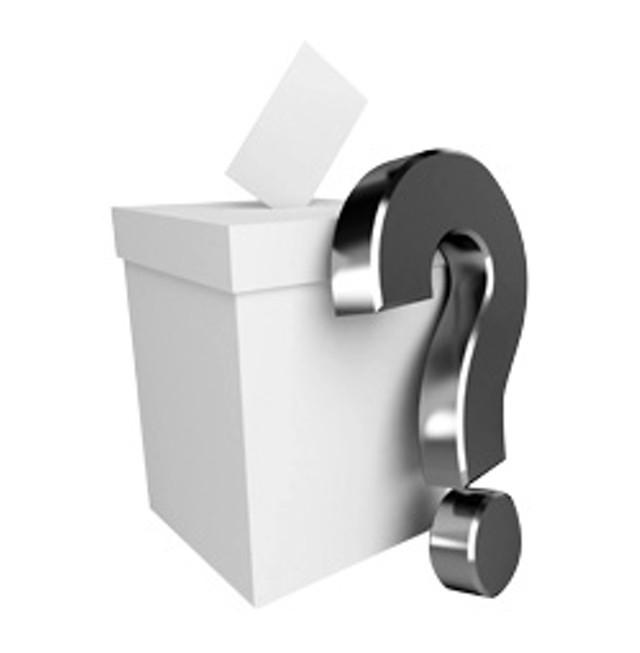 lm-ballot.jpg