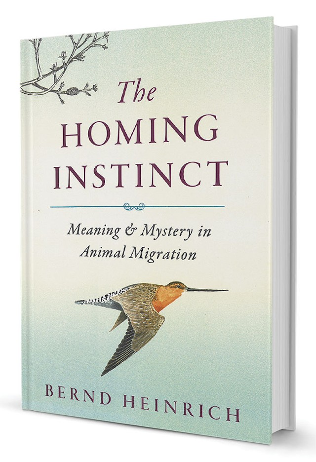 The Homing Instinct: Meaning & Mystery in Animal Migration by Bernd Heinrich, Houghton Mifflin Harcourt, 368 pages. $27.