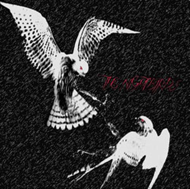 cdreview-nightbirdsr.jpg