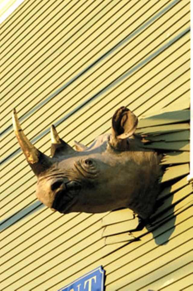 The rhino at Conant Metal & Light - MATTHEW THORSEN