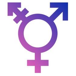 250lm-transgender.jpg