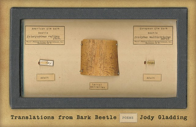 Translations From Bark Beetle: Poems by Jody Gladding, Milkweed Editions, 96 pages. $16.