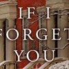 Book Review: If I Forget You, Thomas Christopher Greene