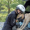 Search-and-Rescue Dogs Earn Their Play