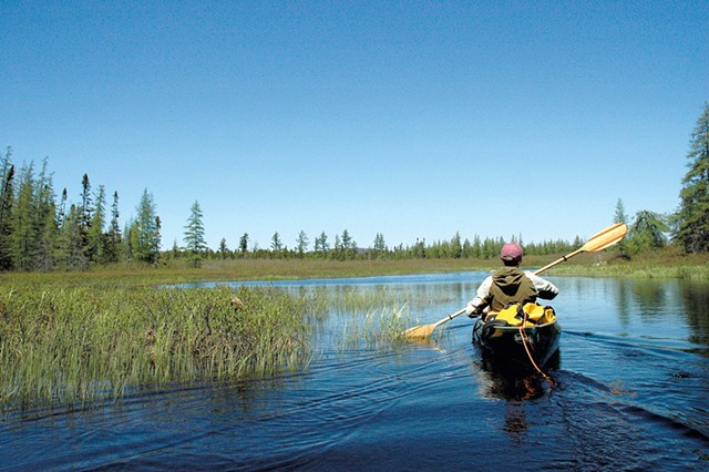 Phil Brown paddling Shingle Shanty Brook - COURTESY OF SUSAN BIBEAU
