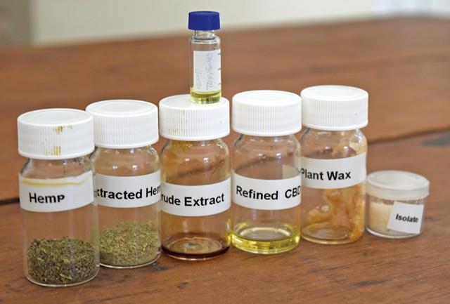 Samples of extractions from hemp - TERRI HALLENBECK