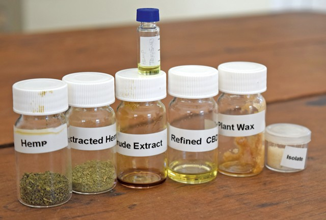 Samples of extractions from hemp - TERRI HALLENBECK