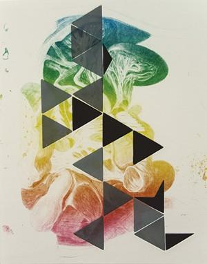 "CSA print from Steve Budington's ""Transplant"" series - COURTESY OF STEVE BUDINGTON"