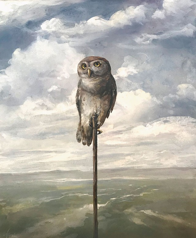 """""""Forest Owlet"""" by Adelaide Murphy Tyrol - IMAGES COURTESY OF THE GALLERY AT CENTRAL VERMONT MEDICAL CENTER"""