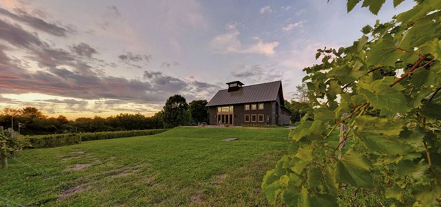 Shelburne Vineyard - COURTESY OF SHELBURNE VINEYARD