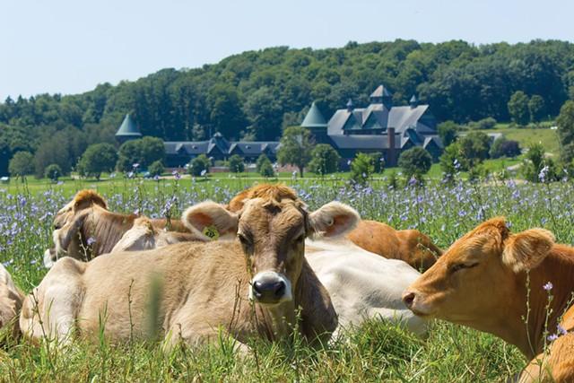 Shelburne Farms - COURTESY OF SARAH WEBB