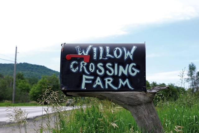 Willow Crossing Farm mailbox - SARA TABIN