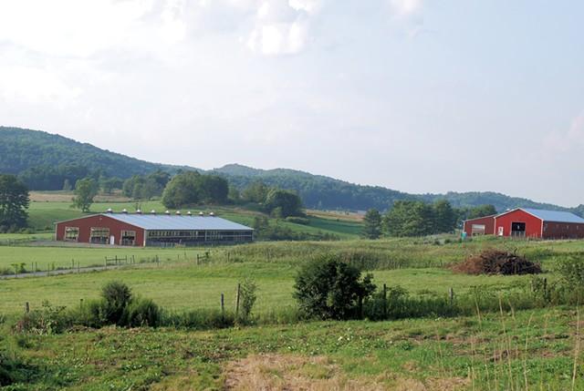 Binding Site facilities - SARA TABIN