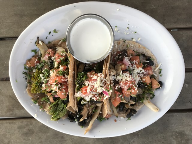 Mushroom tacos at Citizen Cider - SALLY POLLAK