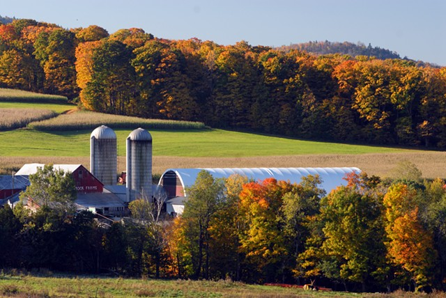 Molly Brook Farm, East Cabot - JEB WALLACE-BRODEUR
