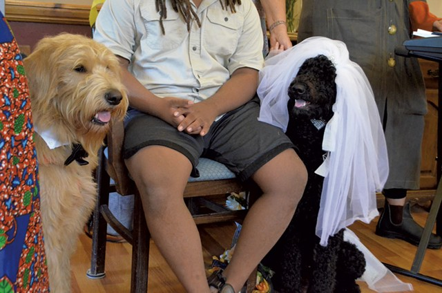 Boy and Flossie at the wedding - SASHA GOLDSTEIN