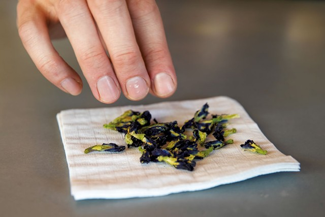 Butterfly pea flowers used in a house specialty cocktail - JAMES BUCK