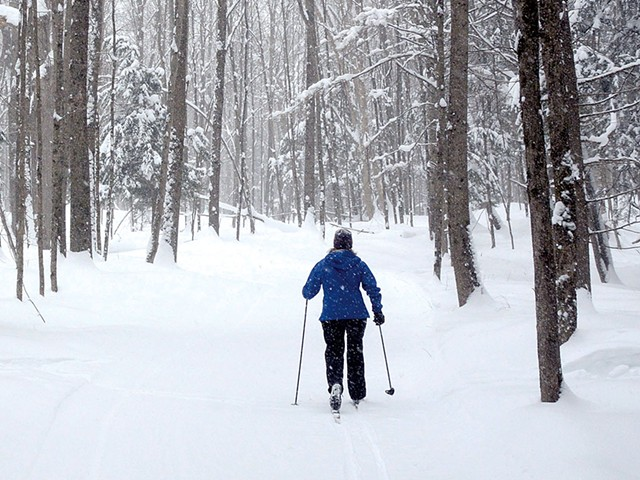Cross-country skiing at Morse Farmfile: jeb wallace-brodeur